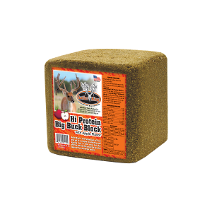 lg-high-protein-big-buck-block