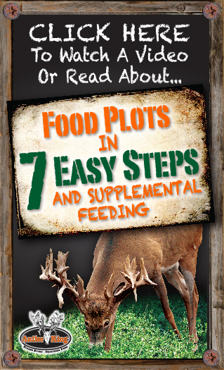 Food Plots In 7 Easy Steps