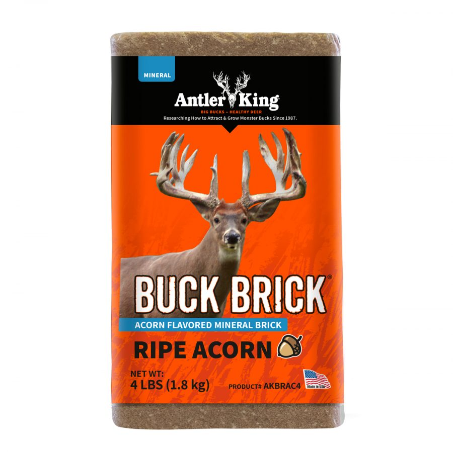 Acorn Flavored Buck Brick